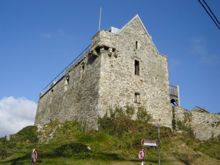 Baltimore Castle
